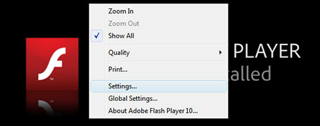 Private browsing in Flash Player 10.1